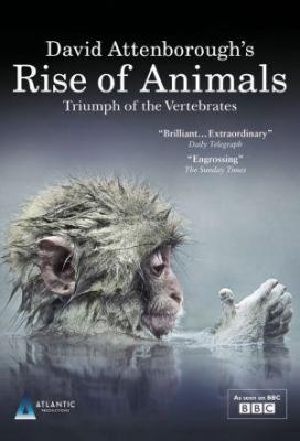 Affiche David Attenborough's Rise of Animals: Triumph of the Vertebrates