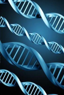 Affiche DNA