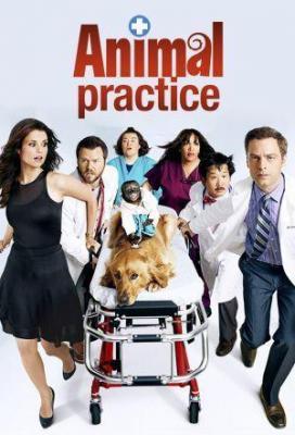 affiche Animal Practice