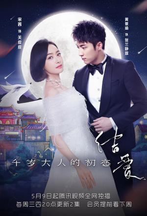 affiche The Love Knot: His Excellency's First Love