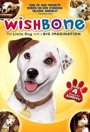 affiche Wishbone