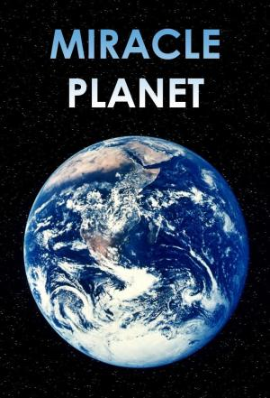 affiche Miracle Planet