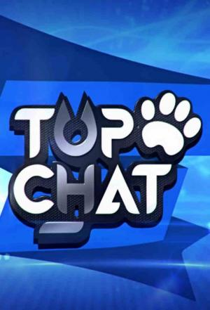 affiche Top Chat