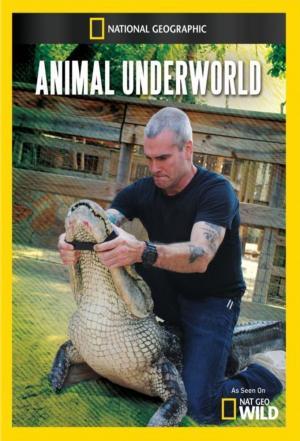 affiche Animal Underworld