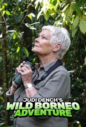 affiche Judi Dench's Wild Borneo Adventure