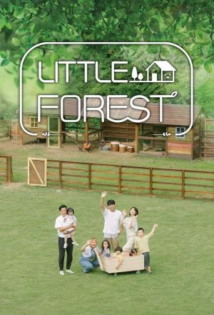 affiche Little Forest