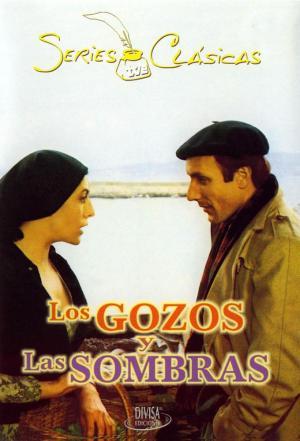 affiche Los gozos y las sombras