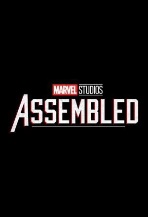 affiche Marvel Studios : Rassemblement