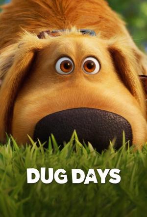 affiche Bienvenue chez Doug