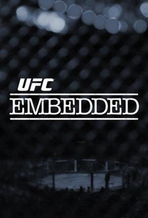 affiche UFC 203 Embedded